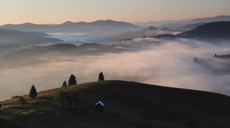 Timelapse of morning foggy valley and forest landscape. Moving mist of the rolling hills at sunrise light