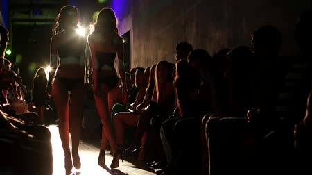 supermodel : Kherson, Ukraine - 9 September 2016: Secret Luxury Night in Fabrika Mall Figures gait beauties in lingerie with lighting projectors in Kherson 9 September 2016. closed fashion show underwea