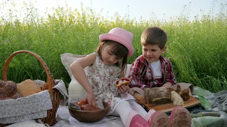 ikrek : Holiday in nature, Friends on green lawn had picnic, Boy and girl on nature with food, The child refuses bread, Happy children in fresh air