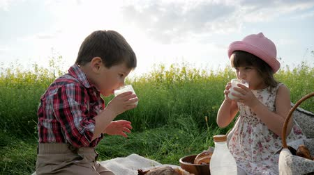 children only : girl and Boy with food on nature, Happy children in fresh air, Bread and dairy products eating, during rest, Holiday in nature, Friends on green lawn, kids at picnic,