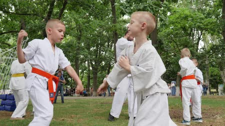 provést : Kherson, Ukraine - 27 May 2017: City Festival martial arts training in park, sports for kids, boys in kimono participate single fight, karate outdoors, fight children, slow motion Dostupné videozáznamy