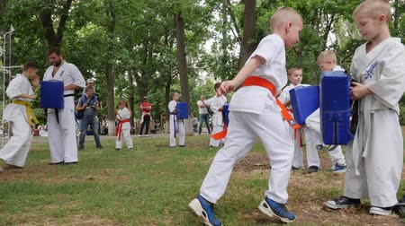 provést : Kherson, Ukraine - 27 May 2017: City Festival karate outdoors, kids group engage in sports, trainer spend instruction battle girls and boys in kimono, martial arts training in park
