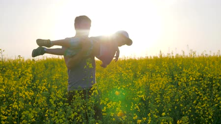 go away : Relationships of parent and child playing at field, little boy at hands father in form of airplane on blossom, daddy with son at arms played into meadow flowers, dad and kid into blossom in sunlight, Stock Footage