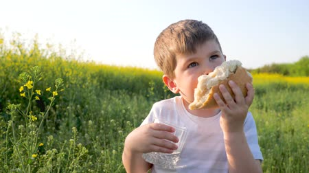 famished : pretty youngster with loaf bread and glass in hand on background field, little boy eating food in park outdoors in sunny day, child eats bread and drink clean water on meadow in backlight
