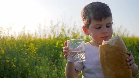 famished : mum gives child glass with clean water, hungry happy child eats food on meadow in backlight, youngster with loaf bread in hand on background field, little boy eating bread in park outdoors