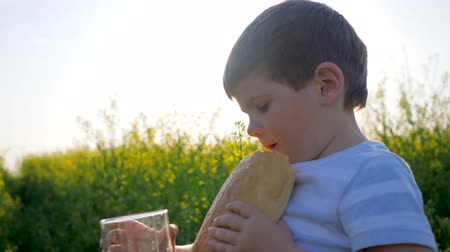 fortunate : little boy drinking from glass with loaf bread in hand outdoors, child drink clean water on meadow in backlight, cute kid in sunny day, happy small guy in grass on background field flowers Stock Footage