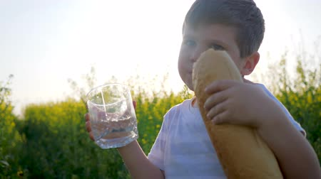 famished : happy child eats bread and drink clean water on meadow in backlight, youngster with loaf bread and glass in hand on background field, little boy eating food in park outdoors in sunny day