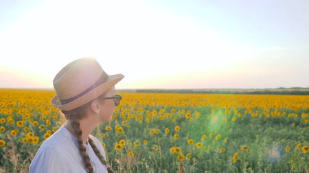 blue braid : portrait female in backlight on background blue sky and sunflowers, girl in glasses and hat beside with field of sunflowers, young woman with braids near field in slow motion