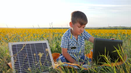 подсолнухи : modern technology, child shows symbol of approval near solar array on background field, contemporary boy uses laptop with charger outdoors, energy consuming technology in slow motion
