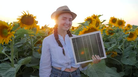 alfândega : female shows symbol of approval in backlight keeps in hand solar battery, joyful girl hold solar panel near field of sunflowers and show hand gesture like, environmentally friendly resources