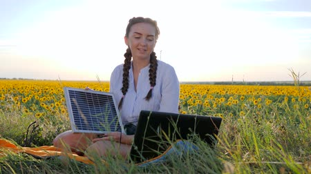 solar power : clean energy, young woman talking on laptop using solar panels outdoors, female in backlight with notebook charger from sun, girl holds in hand solar battery on field of sunflowers