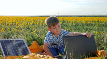 kolektor : child using solar battery recharges laptop on background field of sunflowers, happy kid looks at notebook with solar charger outdoors, energy-generating technology, modern childhood