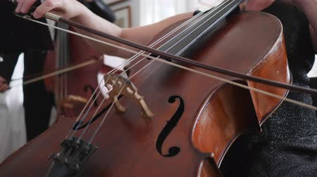 виолончель : cellist plays in slow motion, close-up strings of a cello with bow Стоковые видеозаписи