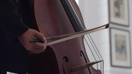 instrumentos : close-up of strings of a cello vibrating as the cellist pulls her bow across the strings