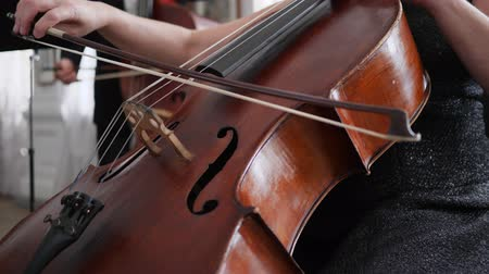 виолончель : close-up of a contrabass with a fiddle-bow, female hand playing on musical instrument