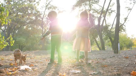 sisters : walk with pet in warm autumn day, kids have a good time together at park in the backlight