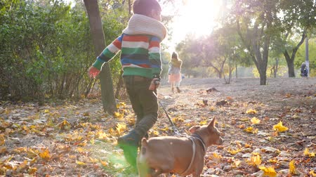 dvojčata : little girl and boy jogging with her dog on warm day at autumn park in the backlight Dostupné videozáznamy