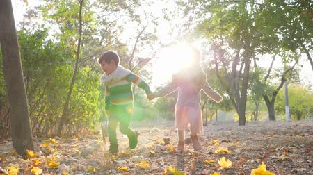 dvojčata : happy kids running with little dog on leash in the backlight at park in warm autumn day Dostupné videozáznamy