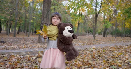 peluş : small girl walk with teddy bear and yellow leaves in hands in autumn park, playing with toy outdoors