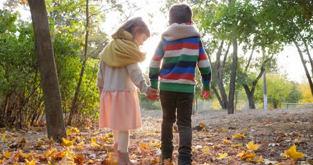 ikrek : first love, girl is walking with guy holding hands in backlight at yellow leaves in autumn park