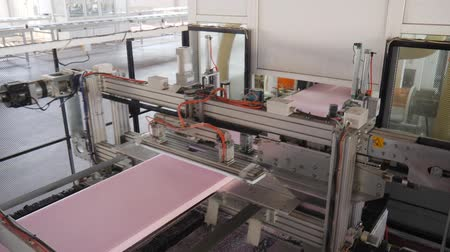 polymer : automatic cutting of styrofoam on conveyor line, equipment for production of foam polystyrene at plant