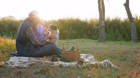 клетчатый : recreation of kid with old man and domestic pet in good warm weather at dawn in autumn picnic