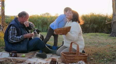 еж : picnic on sunset background, small boy kisses grandparent sitting on plaid with basket near dog and hedgehog Стоковые видеозаписи