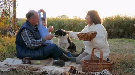 пикник : grandparent with grandchild are sitting on blanket near domestic pet on picnic against autumn nature background