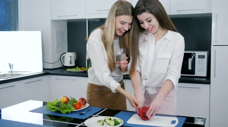 нарезки : girl cuts red pepper for salad on cutting board near a girlfriend with glass of water on background of modern kitchen