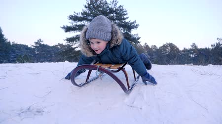 toboggan : smiling boy lying on a sled rides from snow-covered hill in winter forest in slow motion Stock Footage