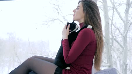fortunate : young woman spend leisure with favorite pet indoors on background of large panoramic window Stock Footage