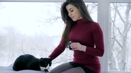 fortunate : leisure with pets, young woman drinks coffee and strokes cat indoors with large window