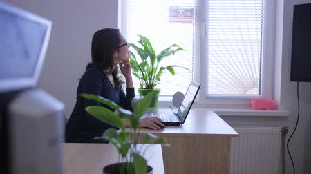 secretário : successful women working with laptop on desk indoors with brightly lit window and indoor flowers Vídeos