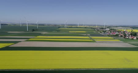 kasza jaglana : colorful agricultural field planted in straight rows with wind turbines near the village with houses