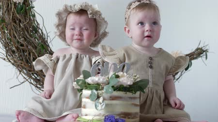 головной убор : birthday cake, nice little girls in dresses sitting on photo shoot in studio on background of wall with decor