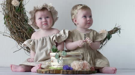sisters : kids in sweet tasty cake in studio on photo shoot on background of wall with decor