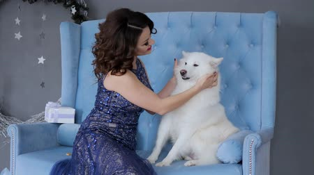 samoyed : sincere emotions of happiness, young woman in long dress plays on sofa with white cute dog at room