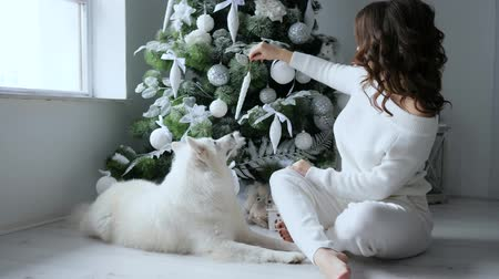 samoyed : eve new year, girl sit next to pet and decorates xmas tree with white toys in cozy atmosphere at home