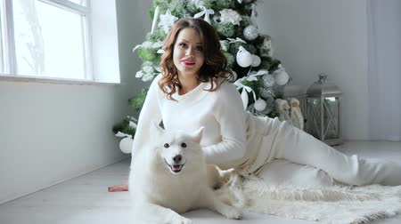 samoyed : New Year atmosphere, young woman poses with white dog in cozy atmosphere on photo shoot near decorated christmas tree