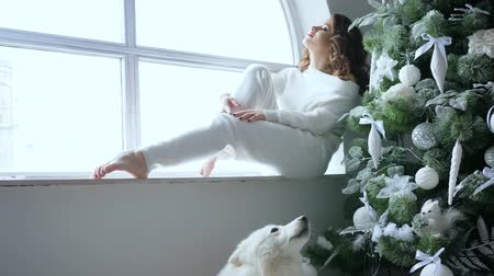 samoyed : holidays, young woman sit on windowsill near decorated christmas tree and pet in cozy atmosphere at home