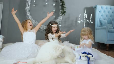 samoyed : little ladies with artificial snow on winter photo shoot with white cute dog on background of New Years decor