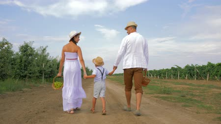 braids : attractive couple with kid holding hands goes on picnic with baskets and in straw hats, back view