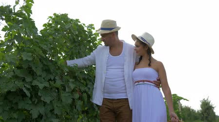 agronomist : autumn season of wine, romantic couple in hats walking among rows of white grapes with straw basket in hands look at the berry in backlight during the harvest