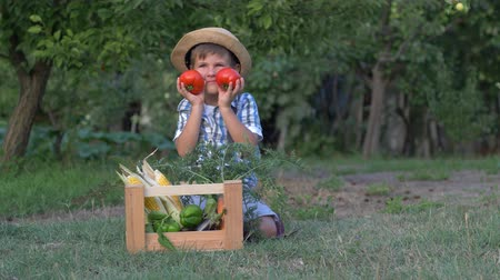 bakłażan : kid playing with tomatoes on camera near wood box with vegetables at the garden during harvesting Wideo