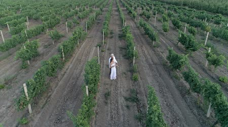 parreira : romantic farm couple dancing and running at a vineyard in slow motion, aerial view