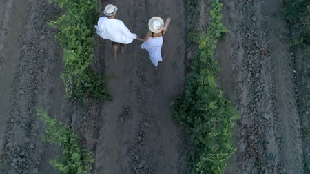 parreira : vacation in the countryside, aerial view of happy couple in straw hats holding hands run between rows grapevines