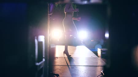 celebrities : celebrity performs in front of many people in backlight, artist on stage on high-heeled with microphone in evening Stock Footage