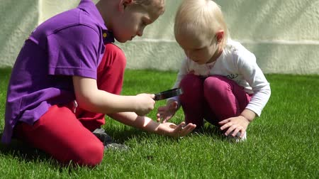 loupe : Kherson, Ukraine 8 August 2018: open day in preschool, interesting children exploring nature with a magnifying glass on green grass in Kherson, 8 August 2018. Stock Footage