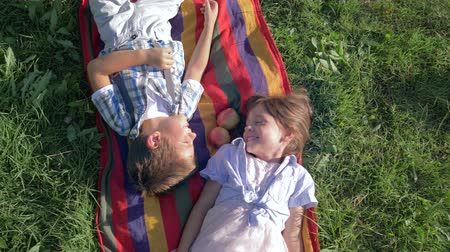 brothers : cheerful kids on nature laugh and lying on a plaid with apples on green grass
