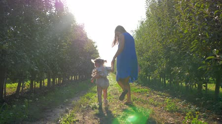 hozam : harvest season in apple orchard, happy family walking between rows of trees at autumn garden in bright sunlight